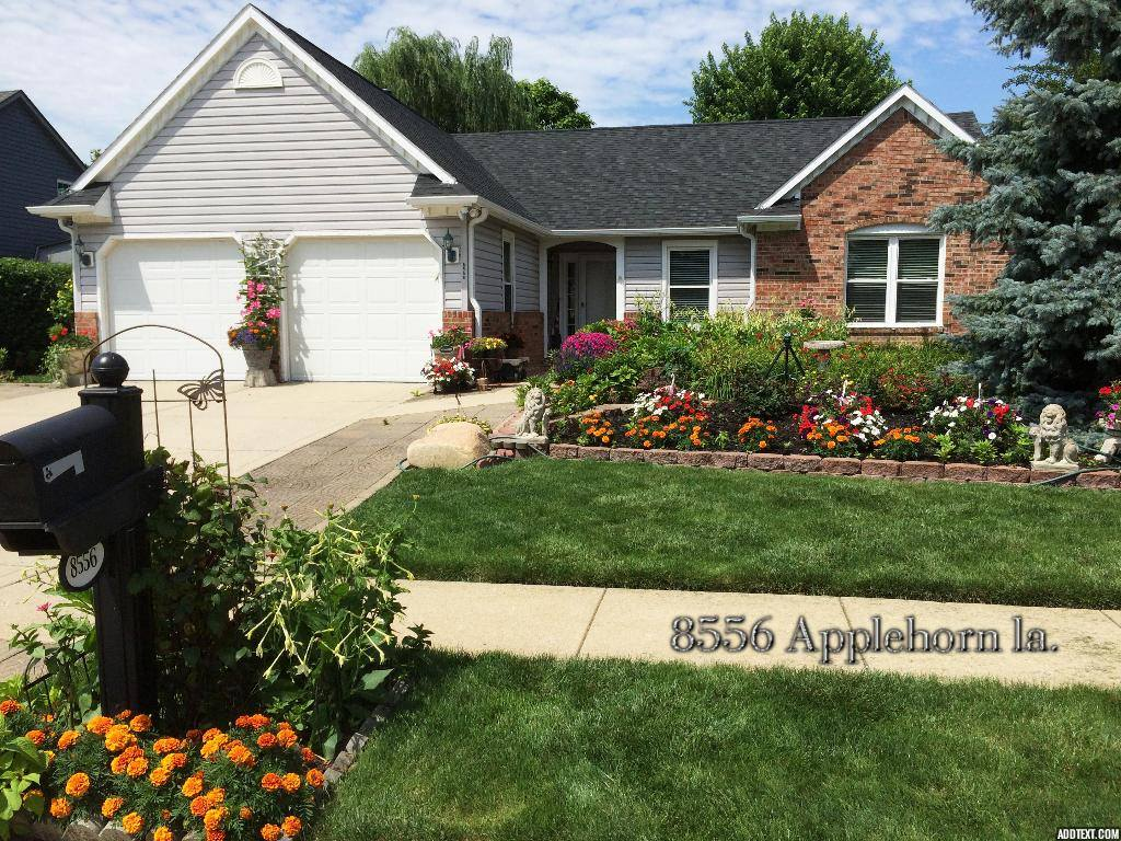 Yard of the Month, July 2015